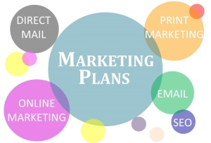 Marketing Plans by New Wind