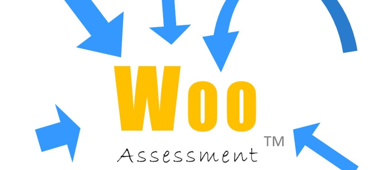 Woo Assessment