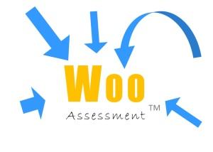 Woo Assessment of business marketing