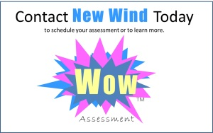 Wow Assessment contact