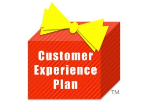 Customer Experience Plan
