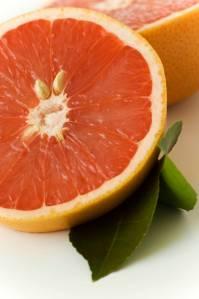 Redlands citrus